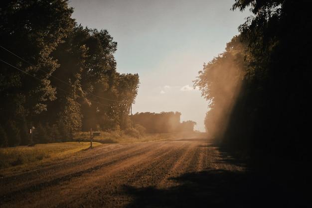 Bela foto de uma estrada de cascalho rural em um dia ensolarado com árvores de ambos os lados