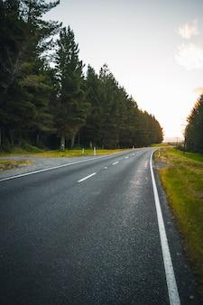 Bela foto de uma estrada estreita de cimento ao lado de uma floresta com incrível céu claro