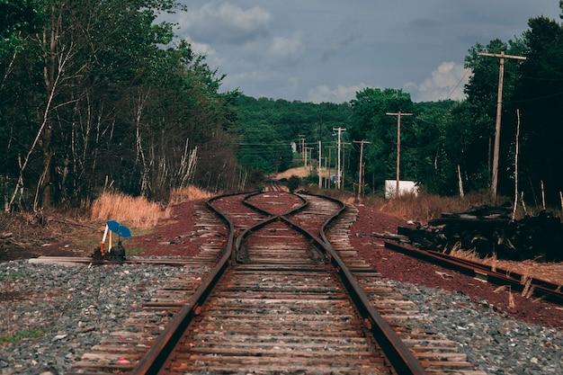 Bela foto de uma ferrovia de metal marrom, rodeada por árvores