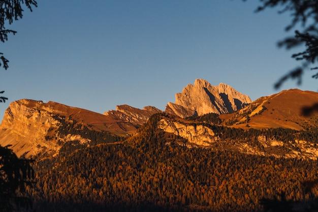 Bela foto de uma montanha arborizada com um céu azul ao fundo em dolomita itália