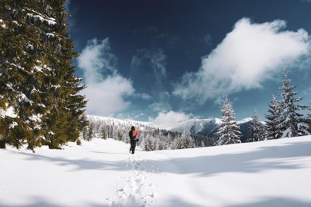 Bela foto de uma mulher caminhando nas montanhas nevadas dos cárpatos cercada por árvores na romênia