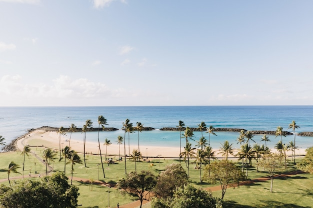 Bela foto de uma praia com um céu azul claro ao fundo