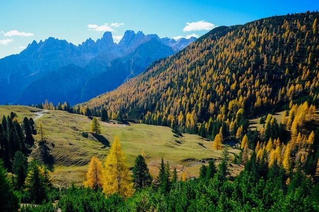 Bela foto do campo gramado com árvores amarelas e verdes em uma colina com montanhas e céu azul