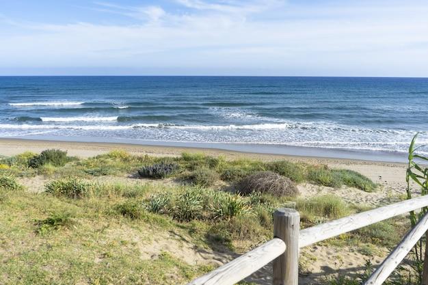 Bela foto do mar azul ondulado e da praia de plantas secas sob o céu azul