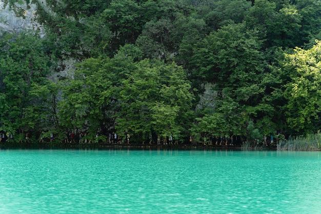 Bela foto dos lagos plitvice, croácia