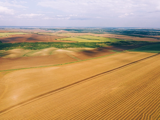 Bela foto feita com drone de incríveis campos de cultivo na zona rural, vista panorâmica.