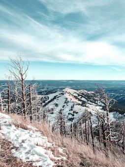 Bela foto vertical de montanhas nevadas e um céu azul