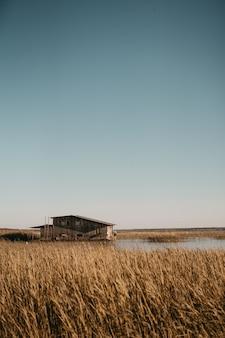 Bela foto vertical de um grande campo de trigo com um pequeno celeiro de madeira no meio