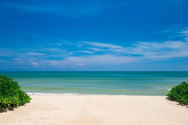 Bela ilha tropical das maldivas com praia.