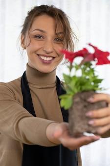 Bela jardineira segura petúnias florescendo com solo nas mãos, foco no rosto sorridente, florista jovem feliz cultivando flores, horta doméstica, hobby de jardinagem, floricultura