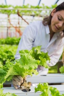 Bela jovem agricultora caucasiana trabalhando em uma fazenda de vegetais hidropônicos