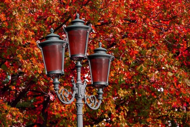 Bela lâmpada de rua no parque no outono. foto de alta qualidade