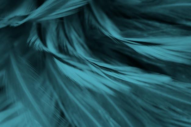 Bela macro close-up fundo verde escuro azul textura de penas azuis