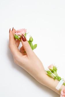 Bela mão feminina com rosas rosa em fundo branco