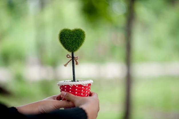 Bela mão verde e imagens de coração dia dos namorados conceito com espaço de cópia