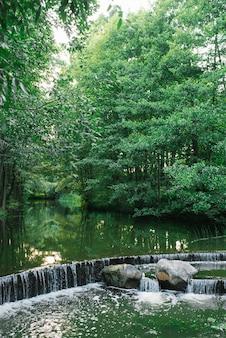 Bela mini cachoeira em cascata no rio no parque florestal