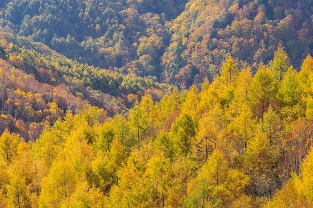 Bela montanha de outono na aldeia de takamura