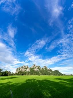 Bela montanha no céu azul, campos de arroz em primeiro plano, província de nakhon sawan, norte da tailândia