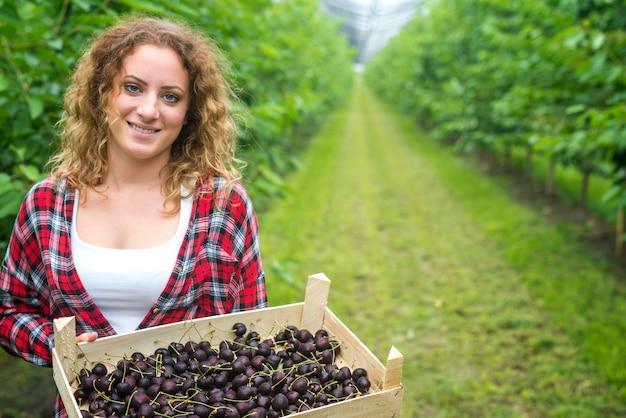 Bela mulher agricultora segurando uma caixa cheia de cerejas em um pomar verde