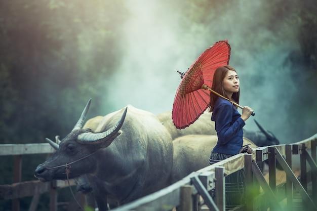 Bela mulher cultura tradicional tailandesa com búfalo, tailândia
