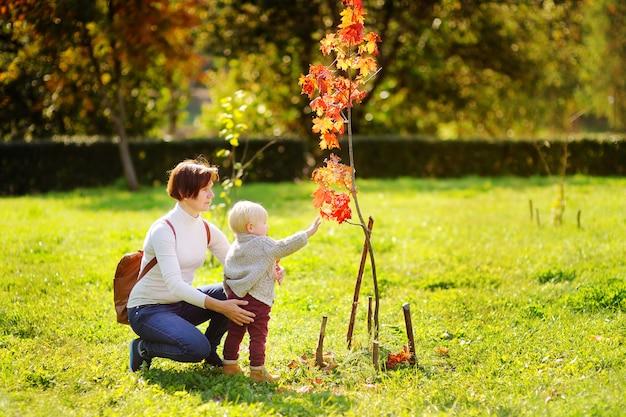 Bela mulher de meia idade e seu adorável netinho olhando a bela árvore de outono