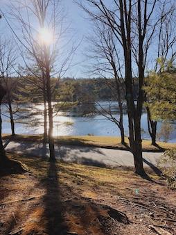 Bela natureza no parque da cidade folhagem colorida um lago pássaros selvagens e uma ponte nos raios quentes do pôr do sol