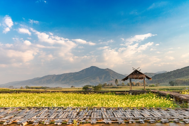 Bela natureza paisagem com montanha