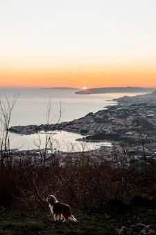 Bela paisagem à beira-mar com o nascer do sol