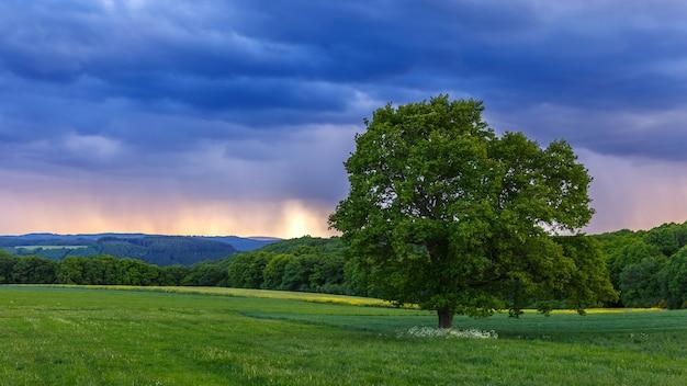 Bela paisagem ao pôr do sol