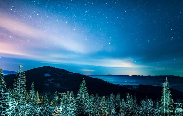Bela paisagem coberta de neve, pinheiros altos verdes esguios e brilhantes crescem em uma colina contra uma montanha e um céu estrelado escuro e brilhante. Foto Premium