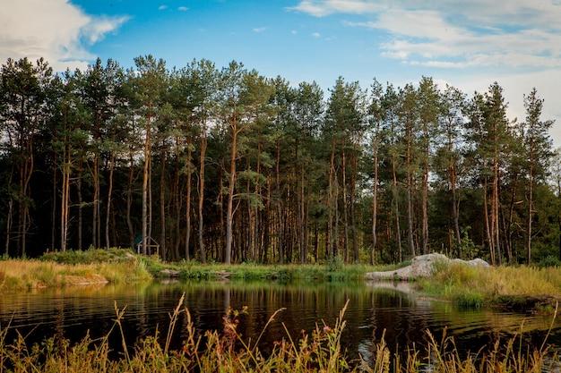 Bela paisagem com floresta perto do lago. temporada de acampamento