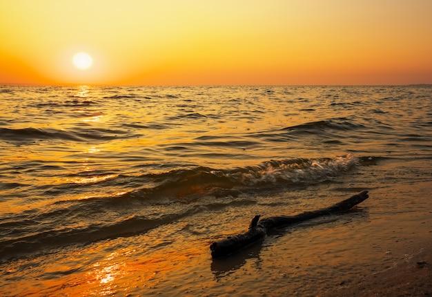 Bela paisagem com mar, pôr do sol e troncos. composição da natureza