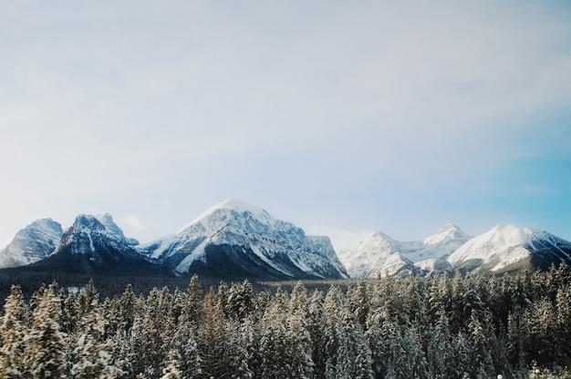 Bela paisagem com muitas árvores rodeadas por altas montanhas rochosas cobertas de neve
