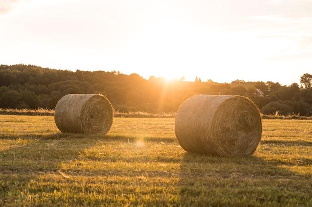 Bela paisagem com rolos de fenos e pôr do sol