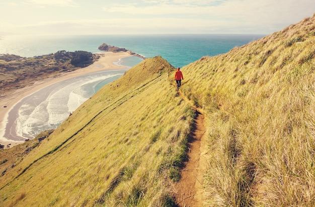 Bela paisagem da ocean beach, nova zelândia.