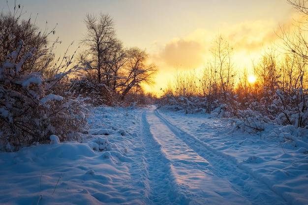 Bela paisagem de inverno com céu ao nascer do sol, estrada e árvores na neve