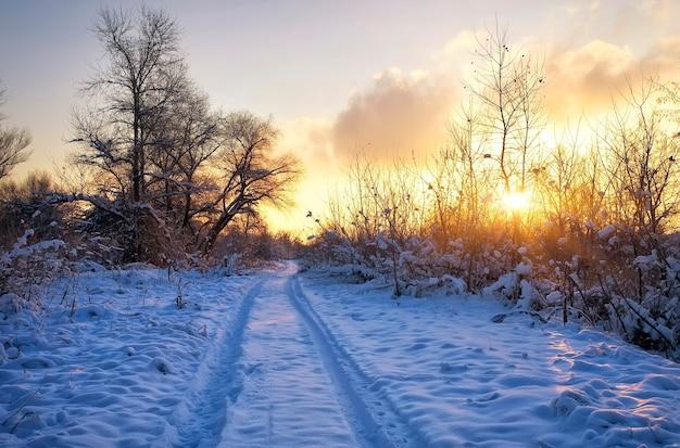 Bela paisagem de inverno com o nascer do sol, a estrada e as árvores