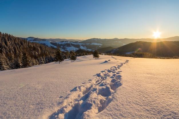 Bela paisagem de natal de inverno. caminho da trilha da pegada humana na neve profunda branca cristalina através do campo vazio, colinas escuras arborizadas no horizonte ao nascer do sol no fundo do espaço da cópia do céu azul claro.