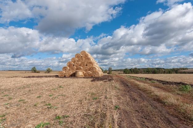 Bela paisagem de outono com rolinhos de palha no campo e nuvens brancas