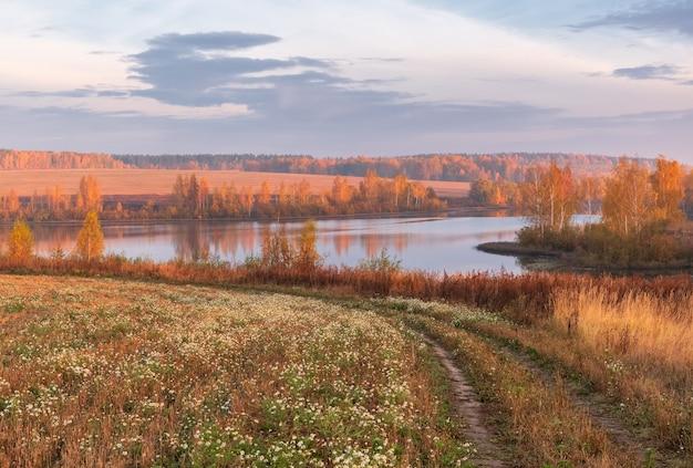Bela paisagem de outono com vista para o lago pela manhã ao amanhecer e árvores com folhagem amarela na costa