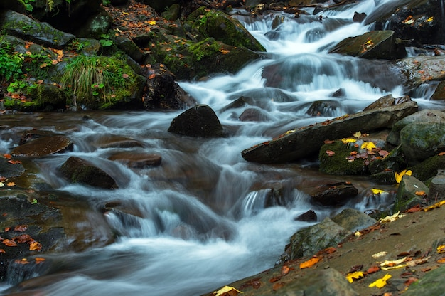 Bela paisagem de outono nas montanhas karpaty na floresta
