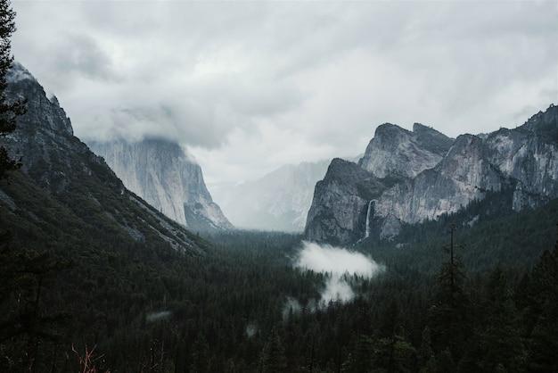 Bela paisagem de pinheiros verdes cercados por altas montanhas rochosas