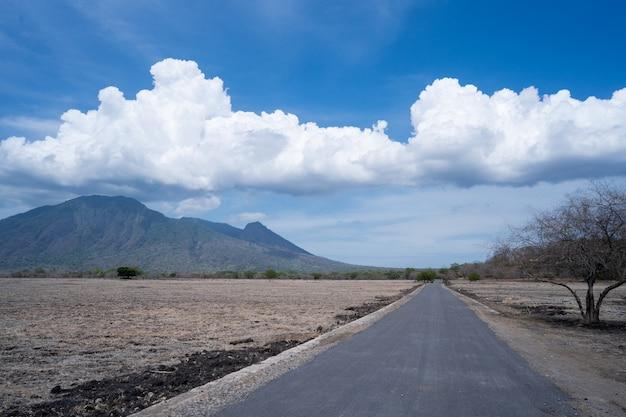 Bela paisagem de savana em baluran banyuwangi
