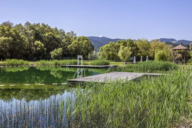 Bela paisagem de um lago com o reflexo das árvores no interior da eslovênia