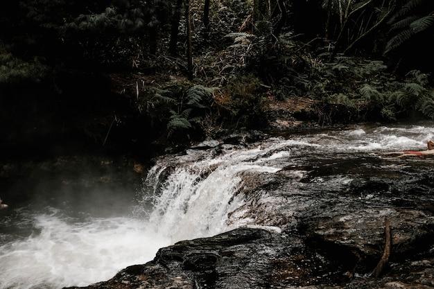 Bela paisagem de uma cachoeira em uma floresta cercada por nevoeiro e árvores em um dia chuvoso