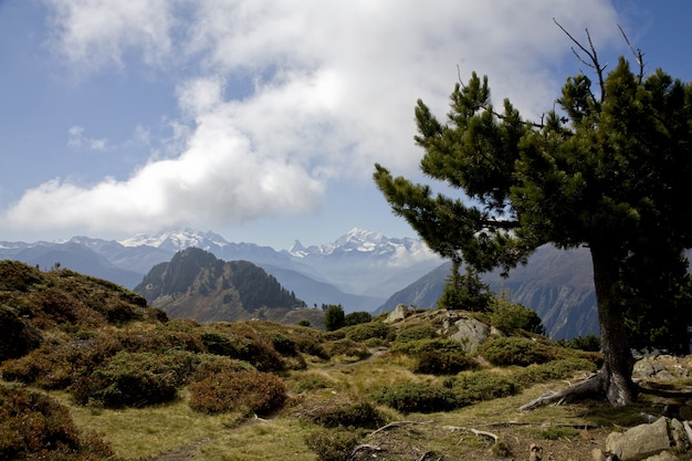 Bela paisagem de uma trilha nos alpes suíços sob um céu nublado