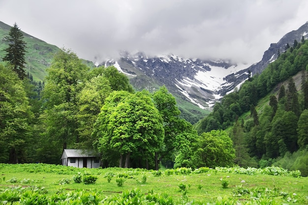 Bela paisagem de verão. pequena casa branca nas montanhas. avadhara, república da abkhazia.