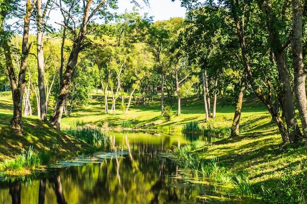 Bela paisagem dos jardins da mansão de uzutrakis. reservatório de manor park.