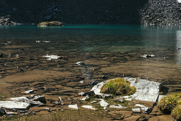 Bela paisagem ensolarada com musgos e gramíneas em pedras perto da beira da água do lago de montanha na luz solar. paisagem cênica com flora montanhosa perto da borda do lago glacial. água clara do lago glaciar.