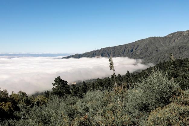 Bela paisagem montanhosa acima das nuvens